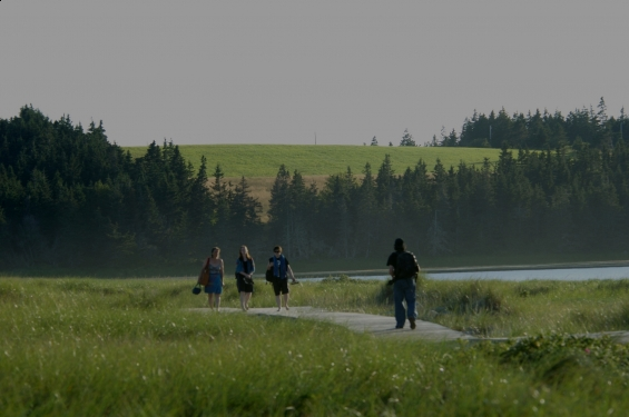 Rissers Beach Provincial Park