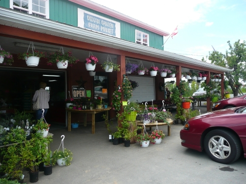 Indian Garden Farm