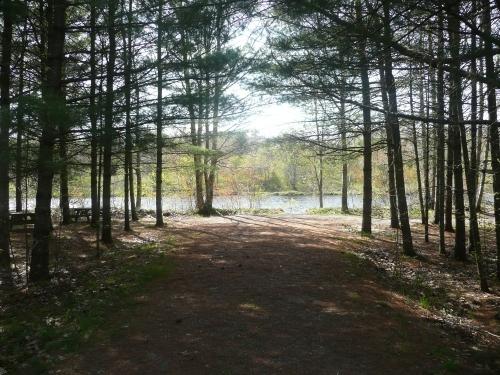 South Shore Annapolis Trail