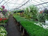 EIEIO Farm
