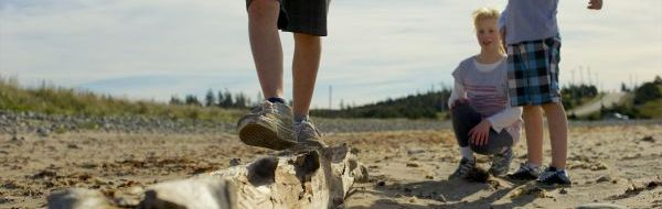 Walking on Driftwood